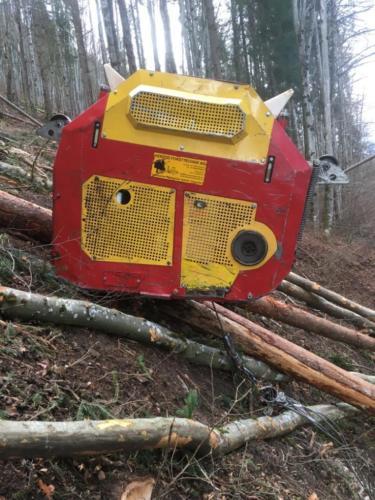 Woodliner 3000