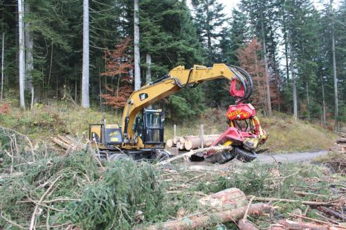 Caterpillar M318D / Woody 60
